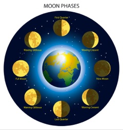 moon phases for gardening pic